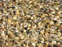 pebble_beach_3642.jpg