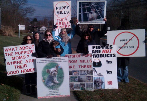 puppymill_protest_winter_08