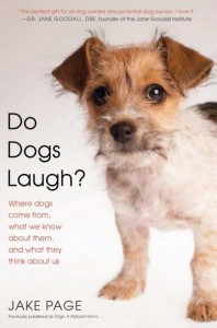 do_dogs_laugh