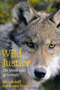 wild_justice
