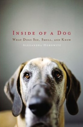 Inside_of_a_Dog