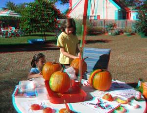 Pumpkin_carving_Sept-09