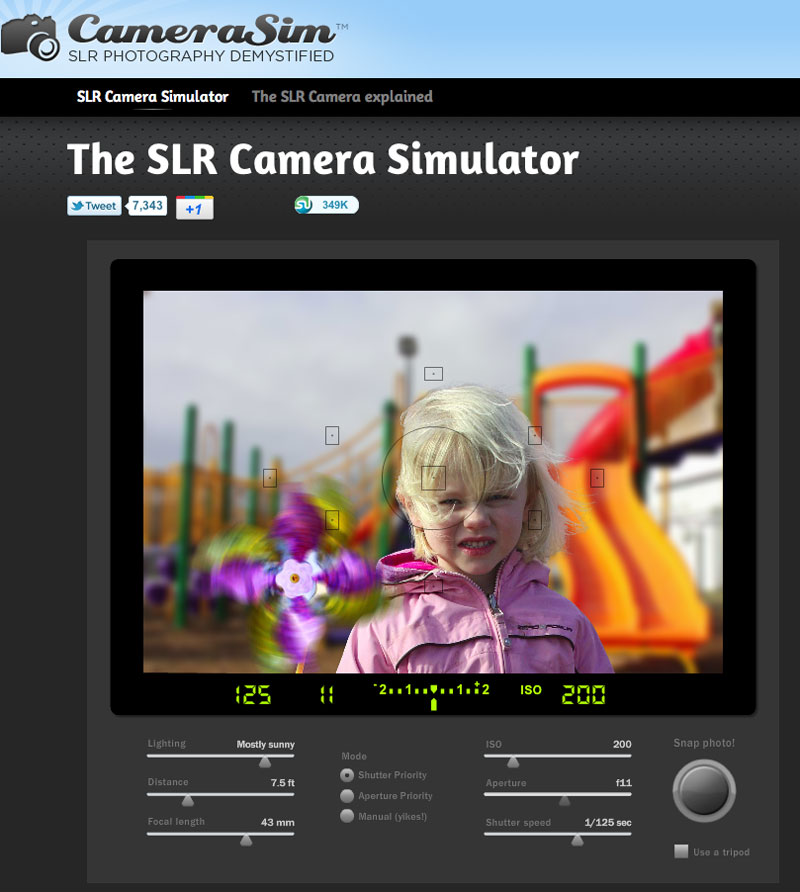 camerasim 1.1 for windows free